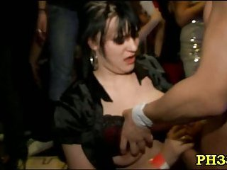 Party bitches go wild